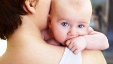 Anne olmak beyni etkiliyor